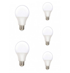 Pack 5 Bombillas Led E27 15W